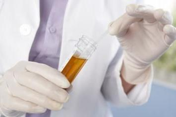 Protein in urine causes