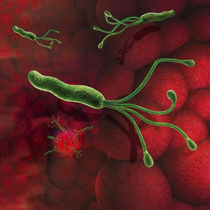 Увеличение миндалин у детей лечение народными средствами