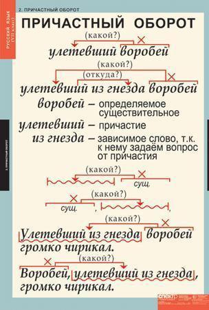 Практикум по русскому языку: что представляют собой предложения с.