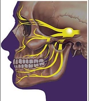 лицевой тройничный нерв
