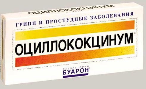 оцилококцинум инструкция по применению