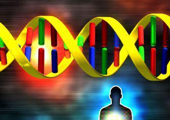 Allelic genes