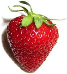 at what distance to plant strawberries