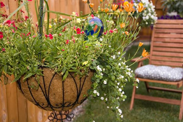 как украсить свой двор цветами