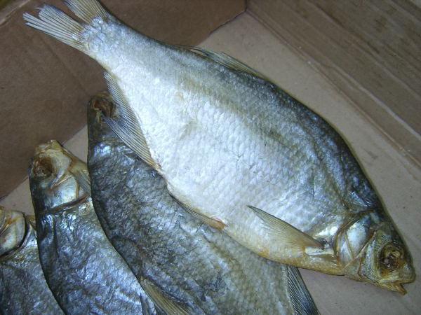 как правильно засушить рыбу