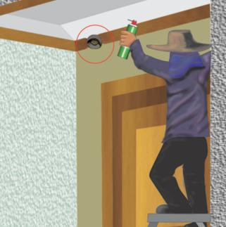 how to bring the wasps from the balcony