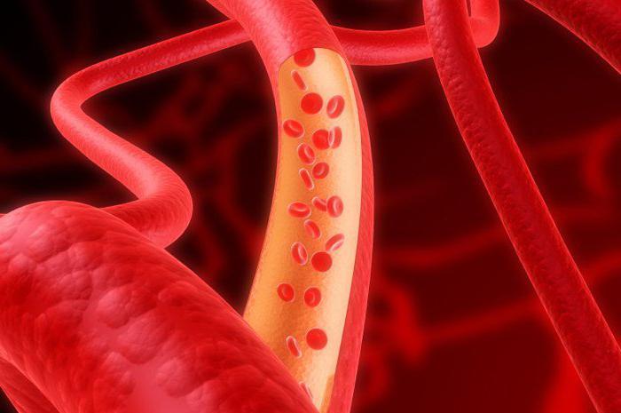 как укрепить кровеносные сосуды
