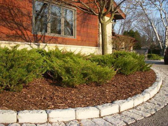 mineral fertilizer peat