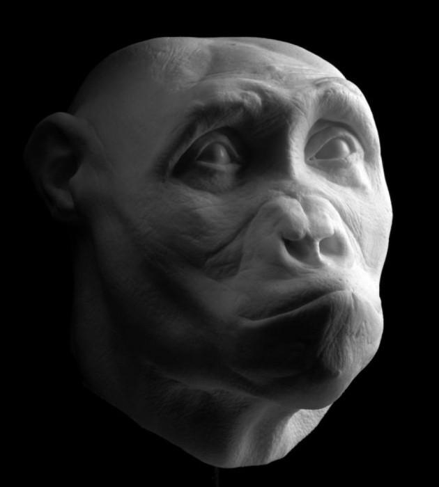 Как появился человек? История происхождения человека