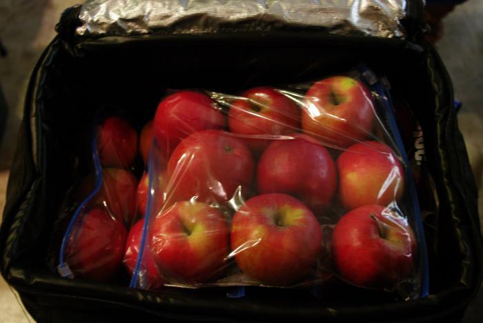 Как хранить яблоки в домашних условиях на