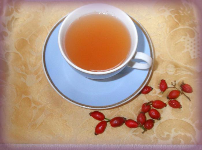 Чай Шиповника Похудение. Настой шиповника для похудения — полезные свойства плодов для организма
