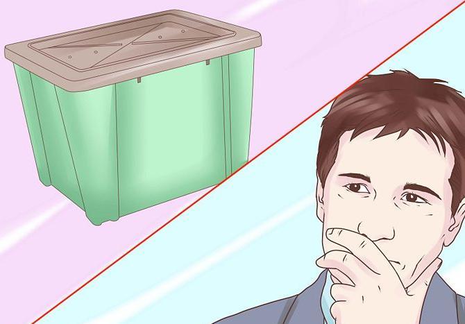 как быстро развести червей