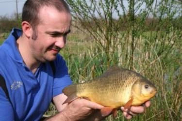how to catch a crucian on a lake