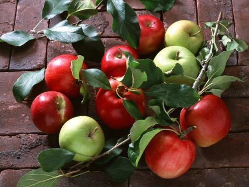 apple care in summer