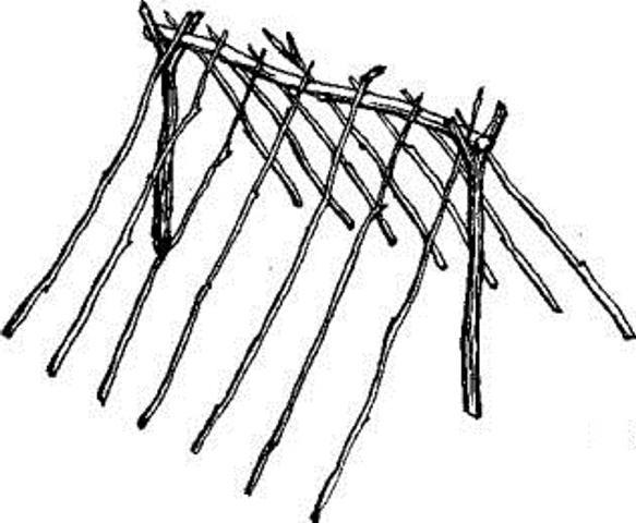 Как построить шалаш своими руками из веток для детей