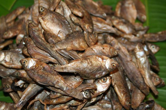 как вялить мелкую речную рыбу