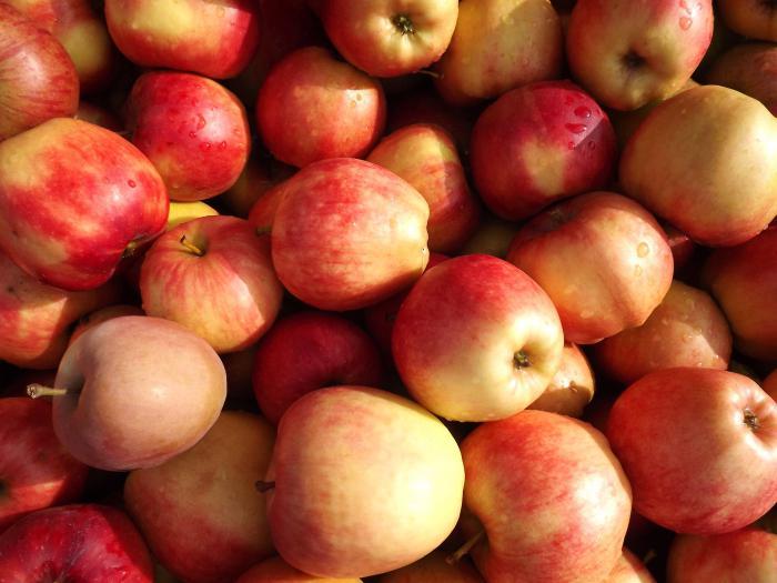 Braga on apples recipe
