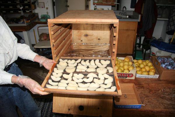 Как сушить груши? Несколько простых способов