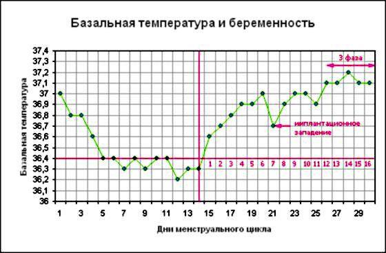 basal temperature during pregnancy schedule