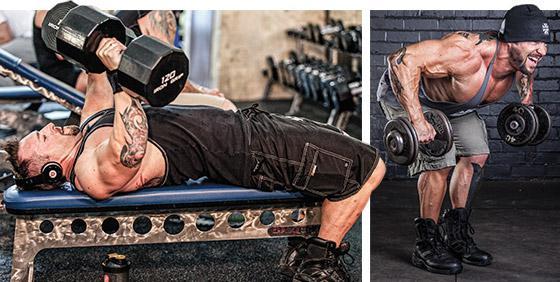 упражнения для спины тренажерный зал