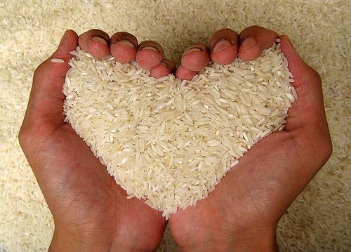 rice diet to cleanse the body