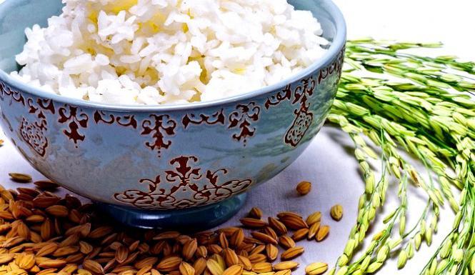 rice diet 5 volumes reviews