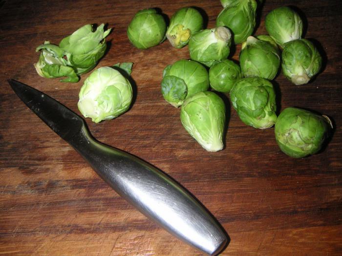 Как готовить суточную капусту