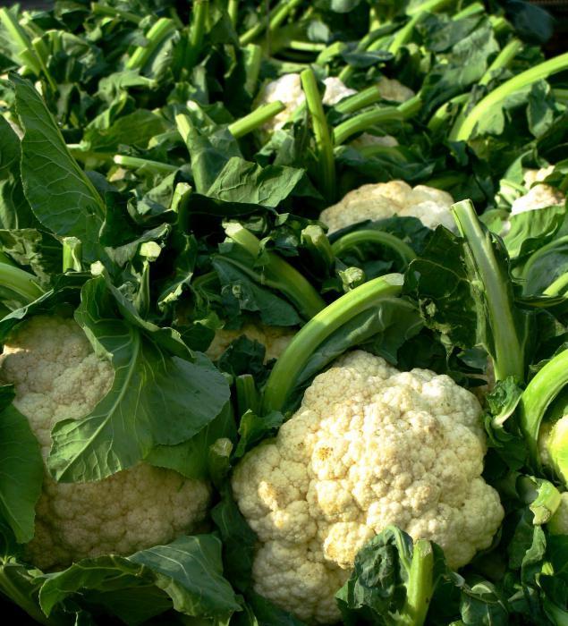 Cauliflower storage