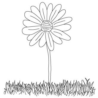 how to draw a daisy step by step with a pencil