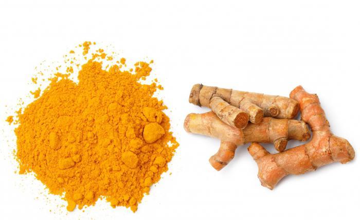 золотой корень лечебные свойства