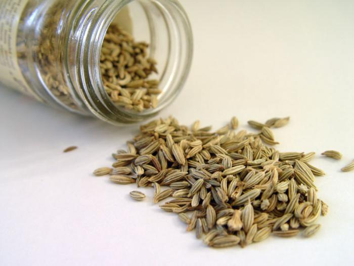 The fruits of cumin ordinary