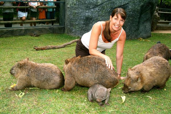 животные австралии список и фото