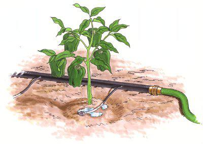 do-it-yourself drip irrigation device
