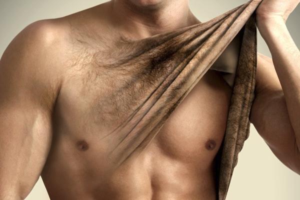 Волосы не растут на груди