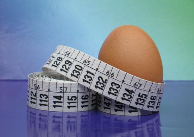 яичная диета отзывы