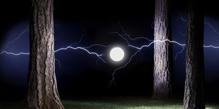 Ball lightning. How to escape
