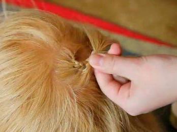 how to braid a braid around your head
