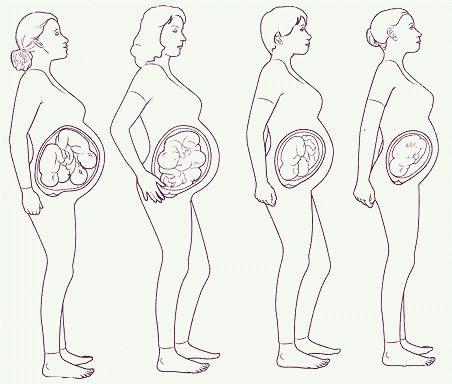 Беременность где находится ребенок картинки