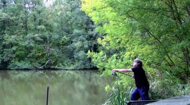 как ловить сазана летом