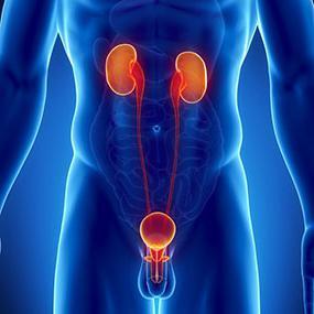 симптомы, (молочница) диагностика и - Кандидоз лечение