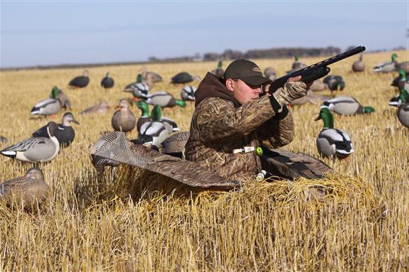 best duck hunting