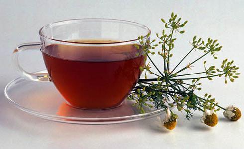 польза ромашкового чая для похудения