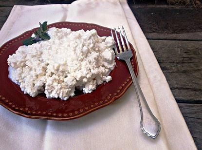 calorie homemade cottage cheese