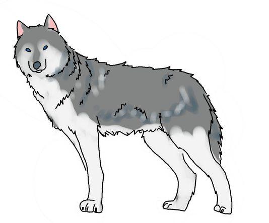 Как разукрасить волка