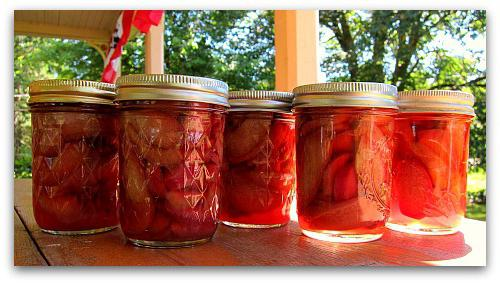 how to make rhubarb compote