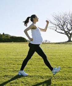 ранние сроки беременности пособие