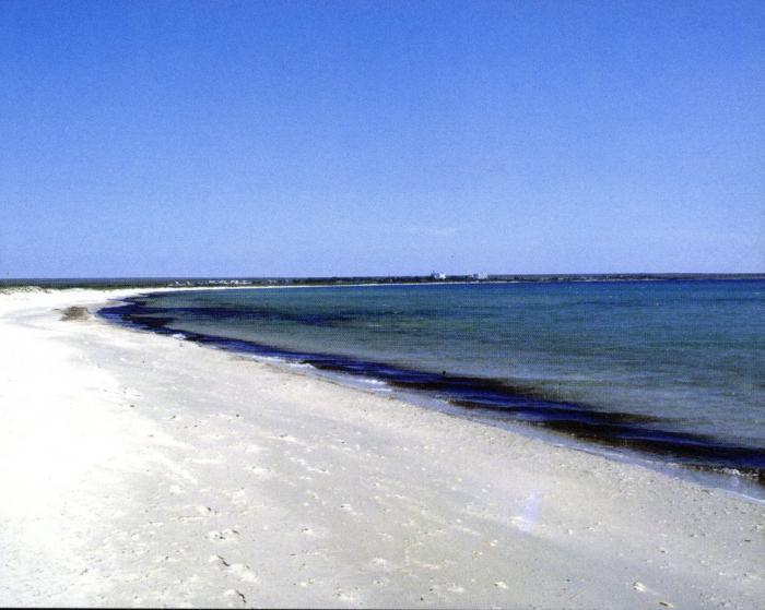 Песчаные пляжи в феодосии 68