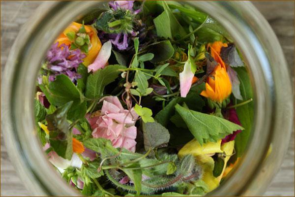 treatment of papilloma folk remedies