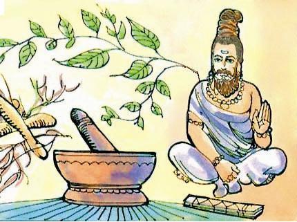 индийский лук применение в народной медицине