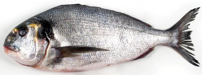 Благородная рыба, запеченная в пергаменте, пошаговый рецепт с фото